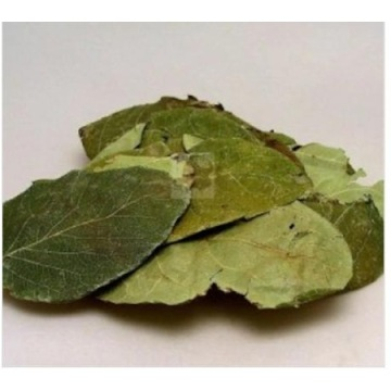 Quince leaf - Cydonia oblonga Natural dried tea herb 50 gr-400 gr Free Shipping