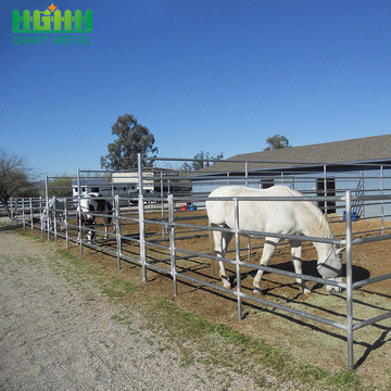 Galvanized Useful Animals of Cattle Panels Horse Fence