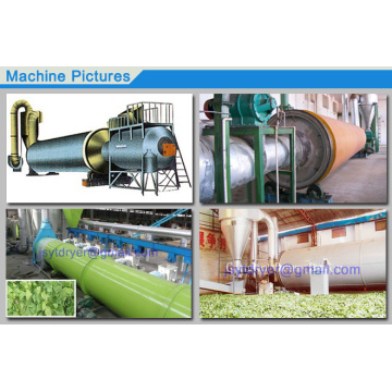 Plant Rotary Barrel Dryer For Chinese Medicine