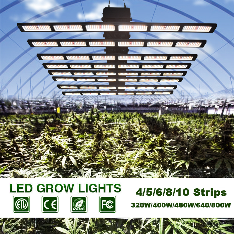 Diming Grow Light
