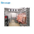 Cold Room Meat Storage