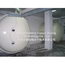 125 Square Meter Freeze Dryer