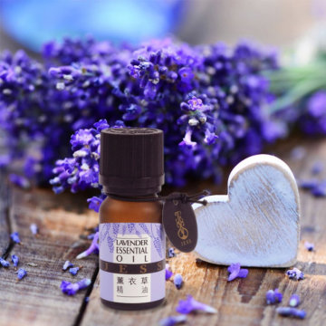 Now lavender essential oil Pure for Skin