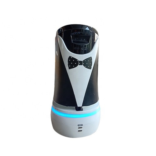 Multi-function Hotel Intelligent Service Robot
