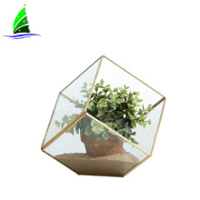 geometric glass cube plant terrariums