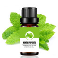 Factory supply pure mentha piperita essential oil