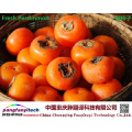 Natural  Nutritional Tasty Healthy Self-produced Persimmon