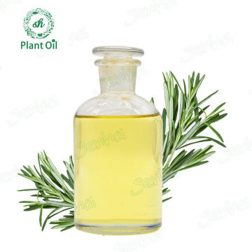 Best Qualtiy Rosemary Oil for Bulk Sale