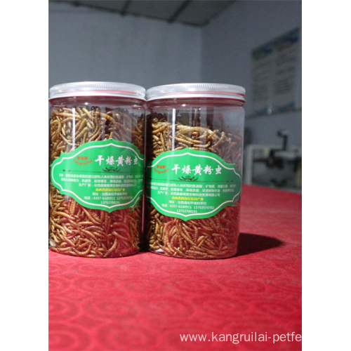 High Protein Fish Feed India