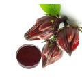 High quality Hibiscus extract powder