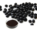 High quality black soybean hull extract powder