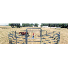 hot sale Horse Fence Panels /Pipe Fencing Horses