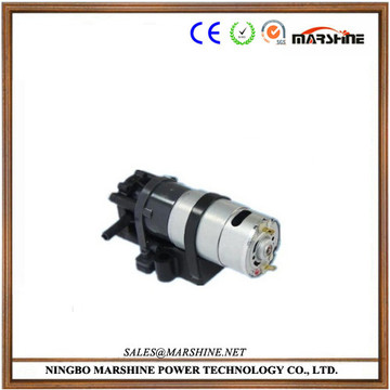 Micro electric high pressure double-direction gear pump