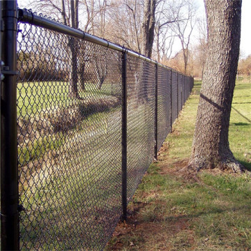 Canada High Quality Galvanized PVC Coated Chain Link Fence