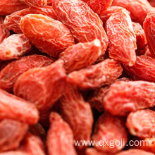 Fresh Organic goji berries dried wolfberries for sale