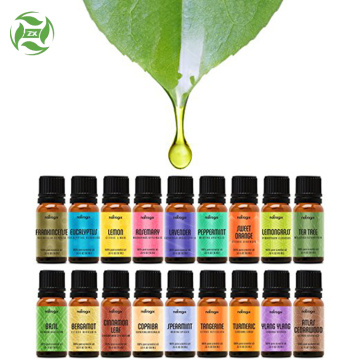 Therapeutic Grade Essential Oil Gift Set