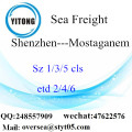 Shenzhen Port LCL Consolidation To Mostaganem