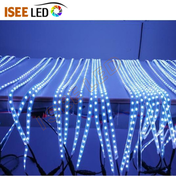 DC12V Indoor Decoration RGBW LED Flexible Strip