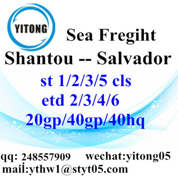 Shantou Logistics Services to Salvador