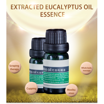 Eucalyptus 100% Pure Best Therapeutic Grade Essential Oil