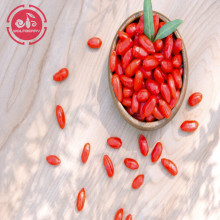 Wolfberry/Lycium Barbarum/Medicine goji berries