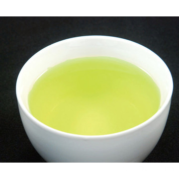 Rich Taste Unique Antioxidants Sencha Green Tea