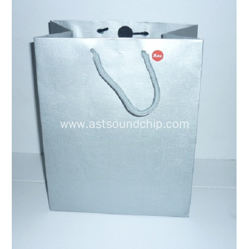 Music Paper Bag,Recording Paper Bag,Music Gift Bag