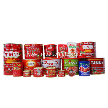 Canned Tomato Paste of Safa Brand