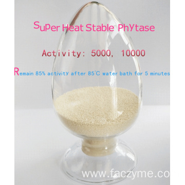 Super heat stable phytase granular/powder