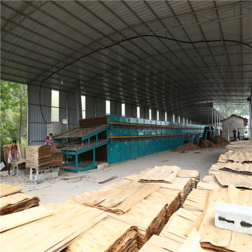 Roller Veneer Dryer in Plywood Production Process
