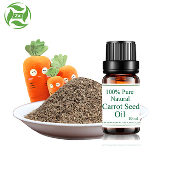 Health Care Organic 100% Carrot Seed Oil
