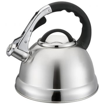 Durable Silver Whistling Kettle