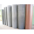 Galvanized Welded Wire Mesh Garden Fence