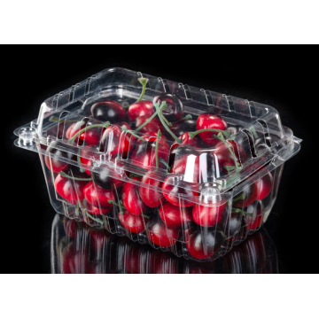 Ecofriendly Transparent Fruit Box