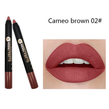 Custom makeup lipstick pen matte waterproof cosmetics