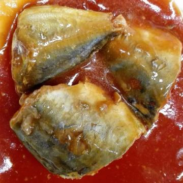 Easy Open Lid Canned Mackerel In Tomato Sauce