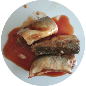 BRC Certified Canned Mackerel Fish in Tomato Sauce