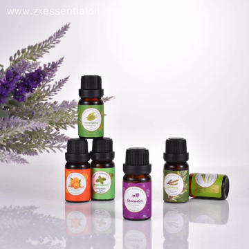 Hot selling essential oil set 6x10ml