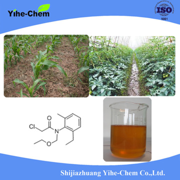 Acetochlor 900G/L EC Agrochemicals Herbicides