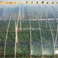 Clear Plastic Multi Span Agricultural Greenhouse Film