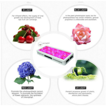 200W LED Grow Light for Hydroponics with Switch