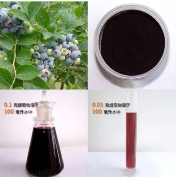 Natural colouring european bilberry extract