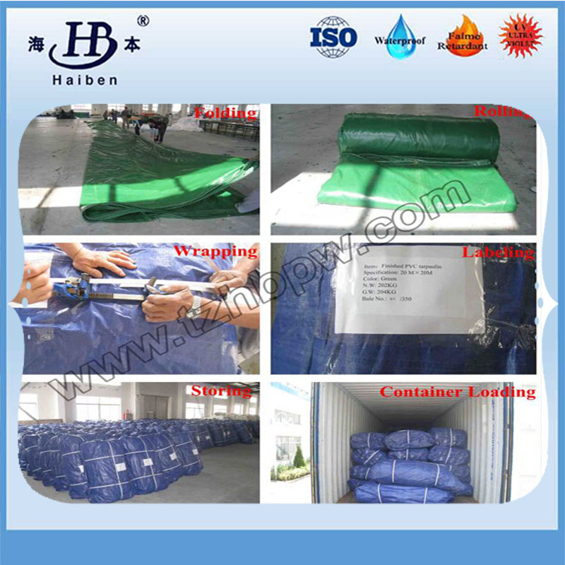Polyester Canvas Fabric for Tarpaulin Covers