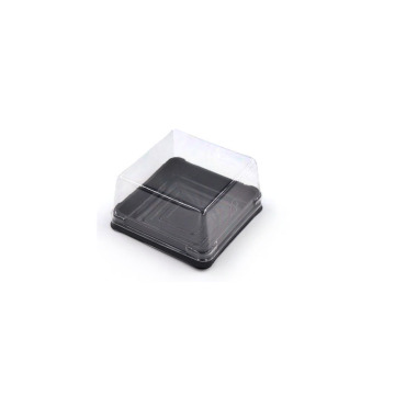 Diposable Cheap Small Square Plastic Cake Box