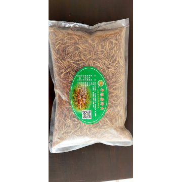 Dried yellow mealworm pet food