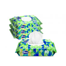Cleaning Anti Bacterial Disinfectant Sanitizing Wipes