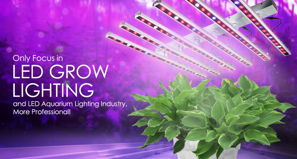 LED Plant Grow Lights