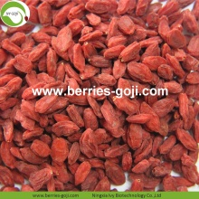 Factory Supply Healthy Nutrition Natural Lycium Barbarum