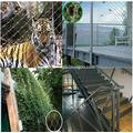 Stainless Steel Rope Architectual Netting