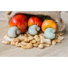 Best price cashew nut kernel
